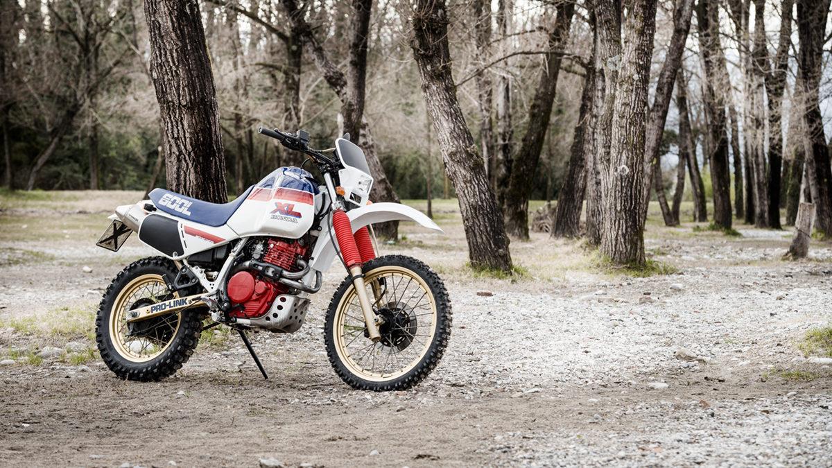 11 FilippoMolena NEC HondaDom L FRD7188