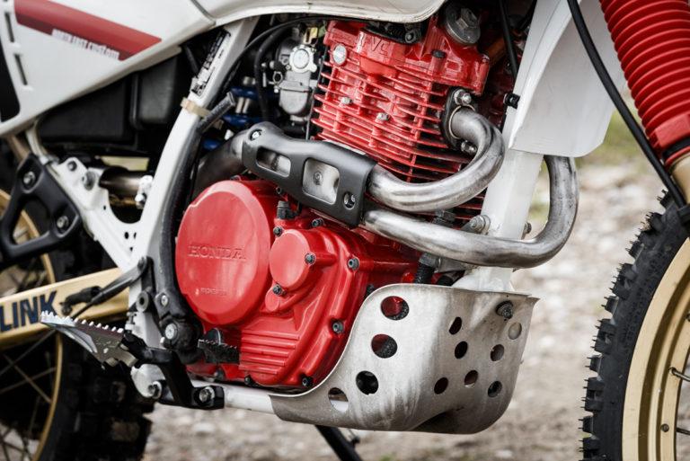 23 FilippoMolena NEC HondaDom L FRD7201