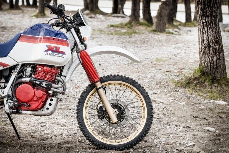 30 FilippoMolena NEC HondaDom L FRD7209